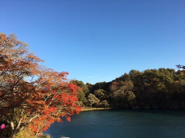 goshiki9.jpg