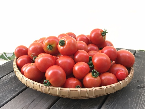 tomato25jul2016.jpg